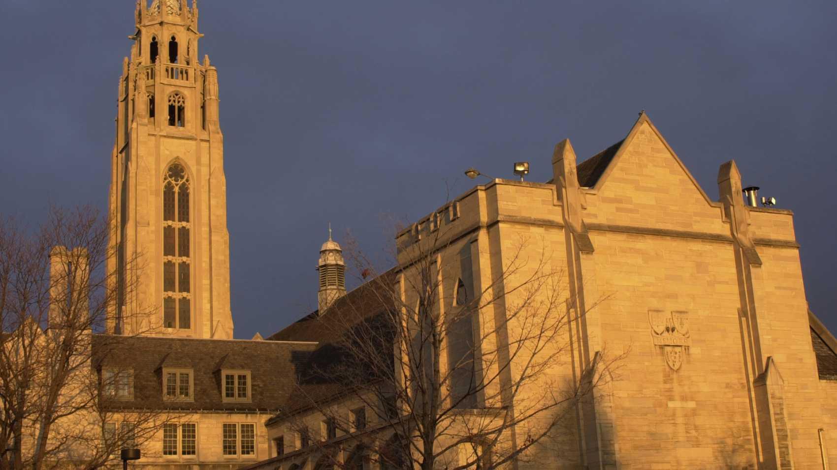 gallery of the university - photo #15